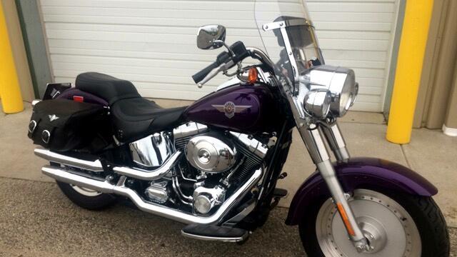 2002 Harley-Davidson FLSTF