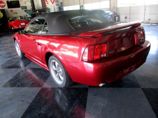 2004 Ford Convertible