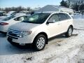 2009 Ford EDGE LIMIT