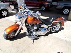 2001 Harley-Davidson FLSTFI