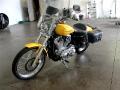 2005 Harley-Davidson XL 883C