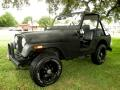 1981 AMC CJ5 Base
