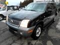 2002 Mercury Mountaineer