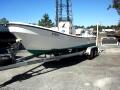 2010 Panga Ocean Waves H22