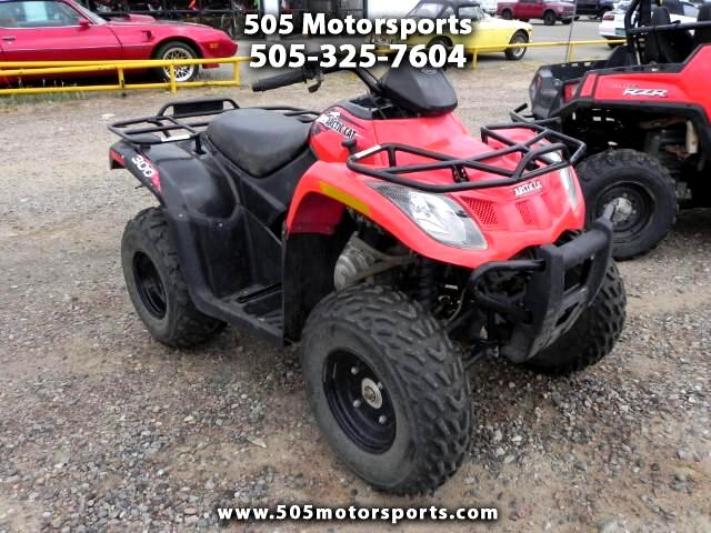 2014 Arctic Cat Base 300