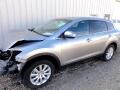 2010 Mazda CX-9