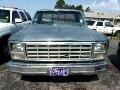 1980 Ford Truck