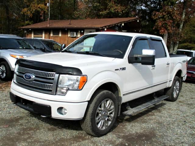 2010 Ford F-150 Platinum SuperCrew 5.5-ft. Bed 4WD