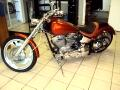 2009 Custom Motorcycle Softail
