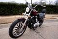 2008 Harley-Davidson XL1200L