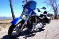 2010 Harley-Davidson FLSTSE