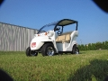 2007 Golf Cart Custom