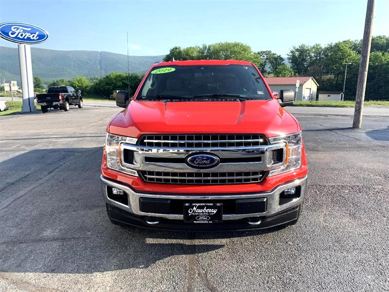 Ford 150 XL SuperCrew 5.5-ft. Bed 4WD 2019