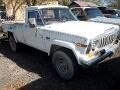 1981 AMC J10 Base
