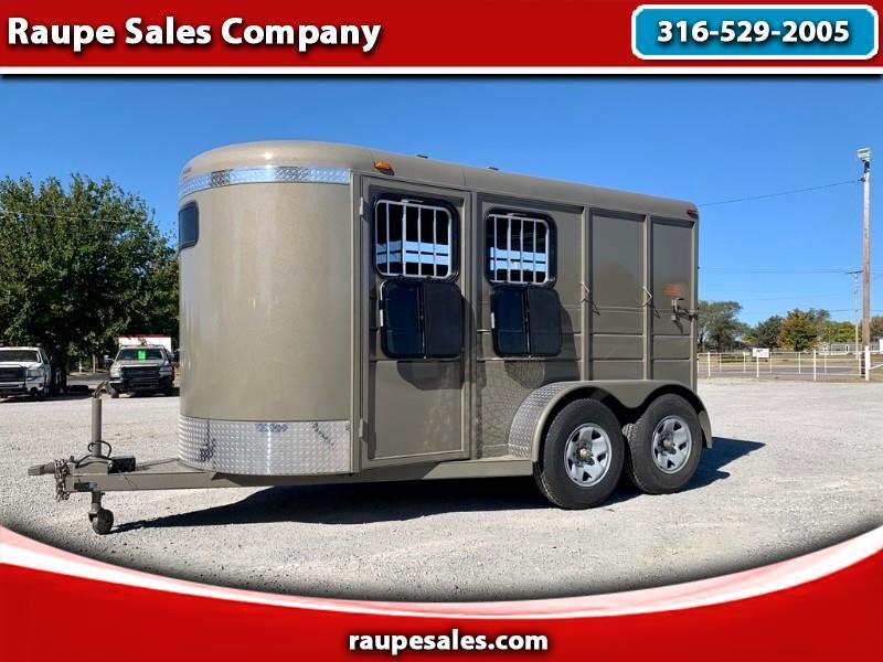 Calico Horse  2021
