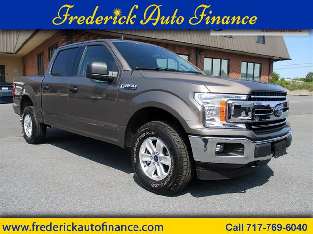 Ford 150 XLT SuperCrew 6.5-ft. Bed 4WD 2019