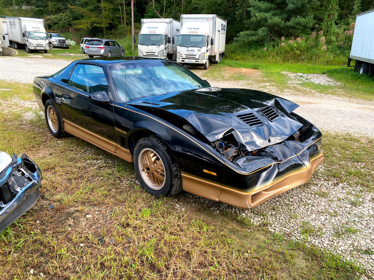 Pontiac Trans Am Coupe 1985