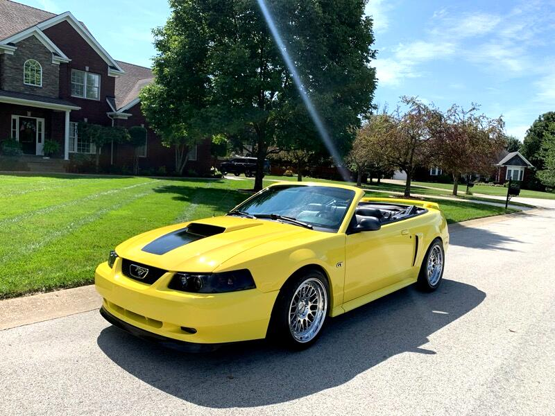 Ford Mustang GT Deluxe Convertible 2003