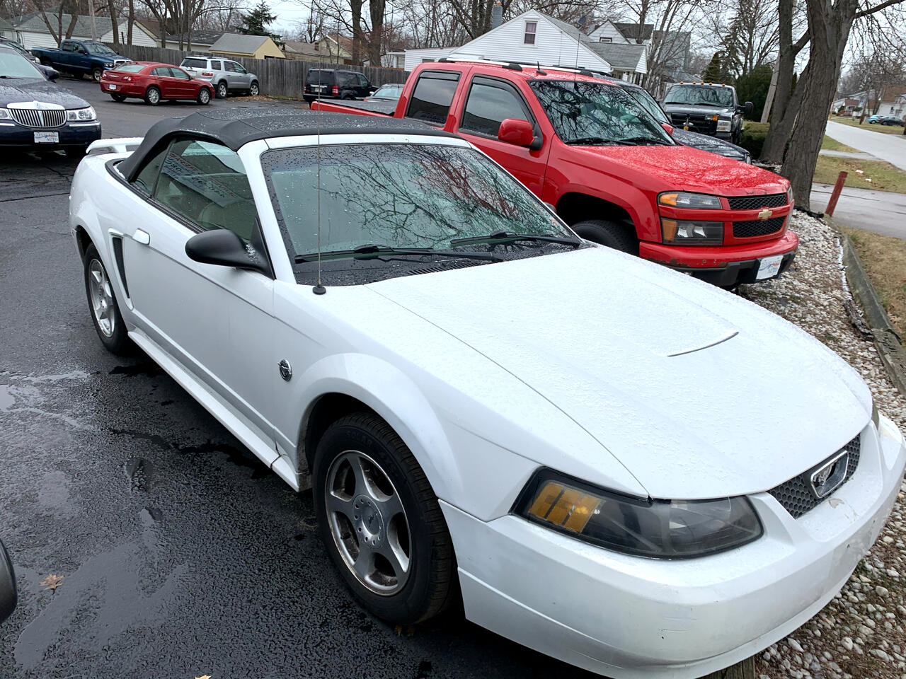 Ford Mustang Deluxe Convertible 2004