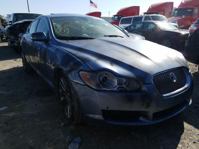 Jaguar XF-Series Premium Luxury 2009