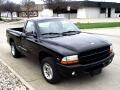 1999 Dodge Dakota Reg. Cab 6-ft. Bed 2WD