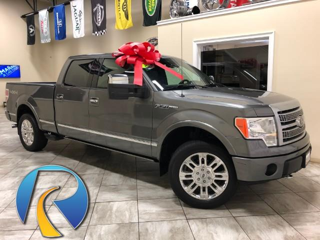 2009 Ford F-150 PLATINUM 4WD