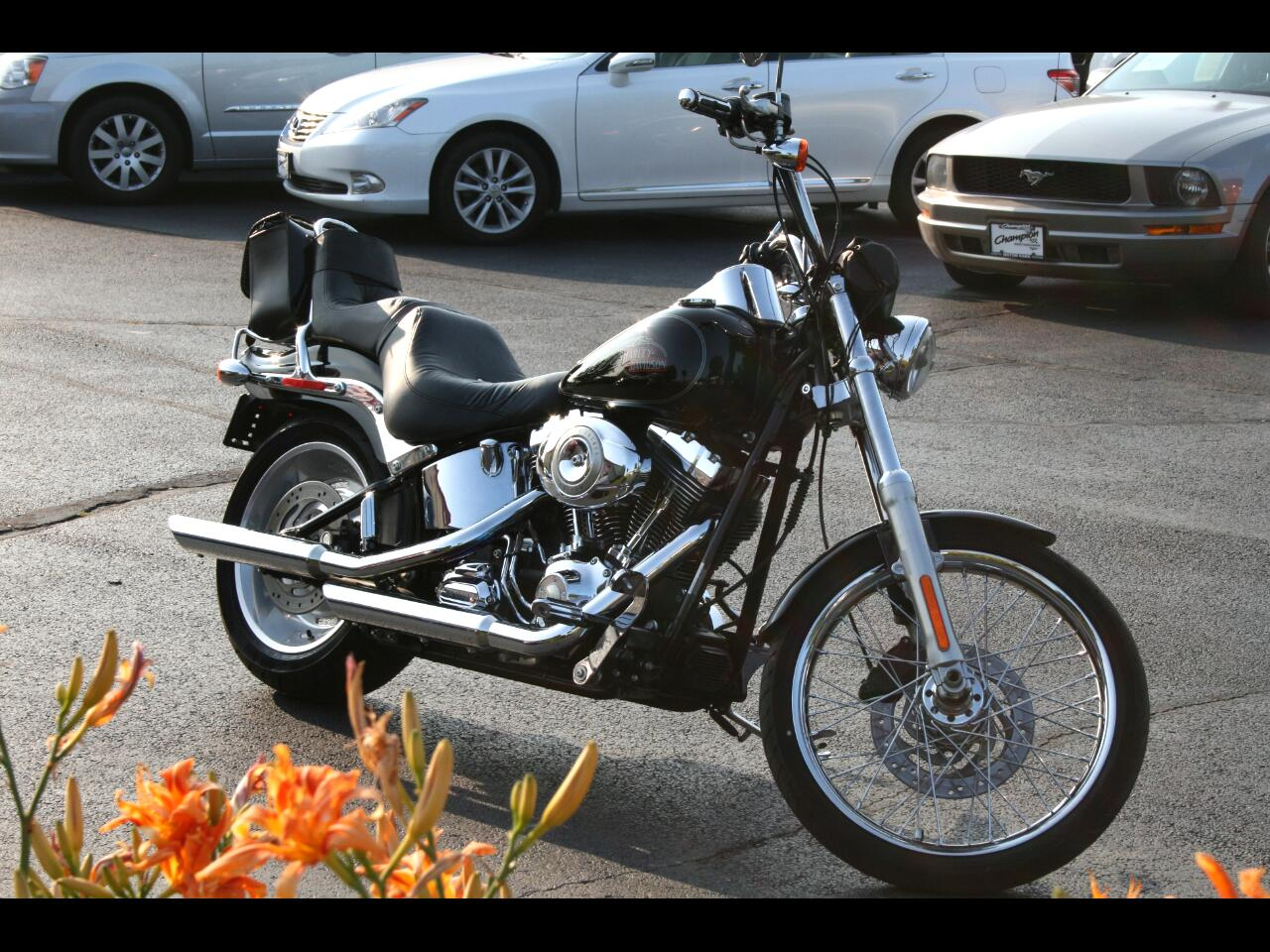 Harley-Davidson Softtail  2009