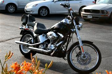 2009 Harley-Davidson Softtail