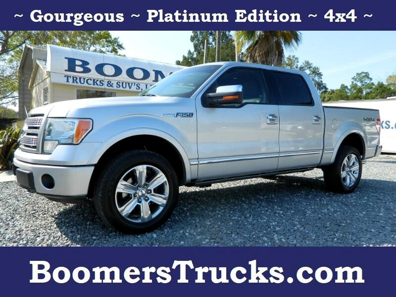 2010 Ford F-150 Platinum Super Crew 4WD