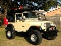 1985 AMC CJ7 Renegade