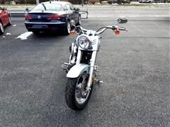2014 Harley-Davidson FLSTFI