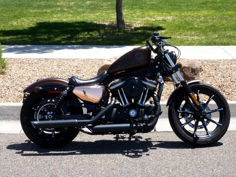 Harley-Davidson XL883N  2019