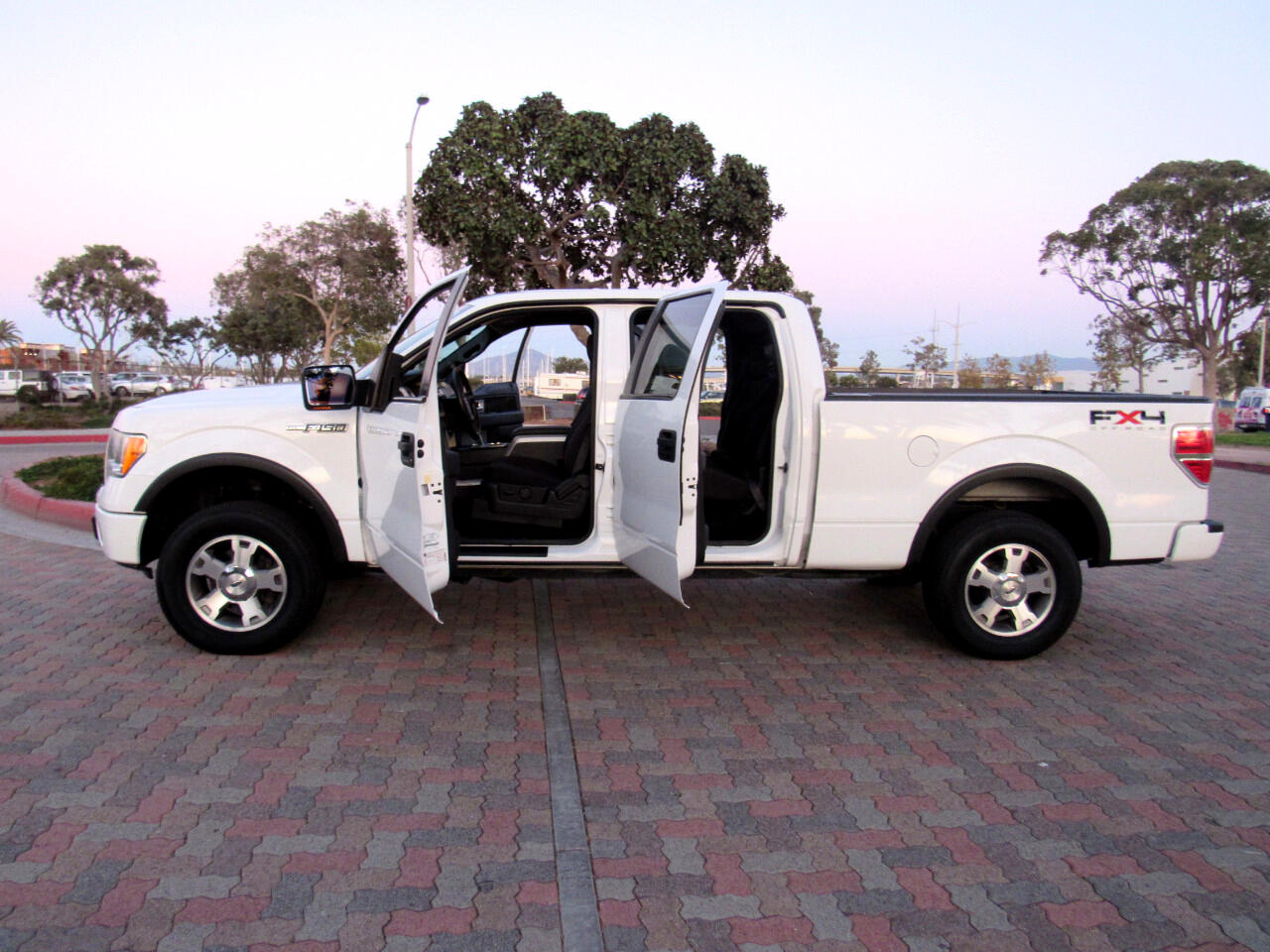 Ford F-150 FX4 SuperCrew 6.5-ft. Bed 4WD 2009