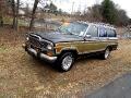 1983 AMC Wagoneer Limited