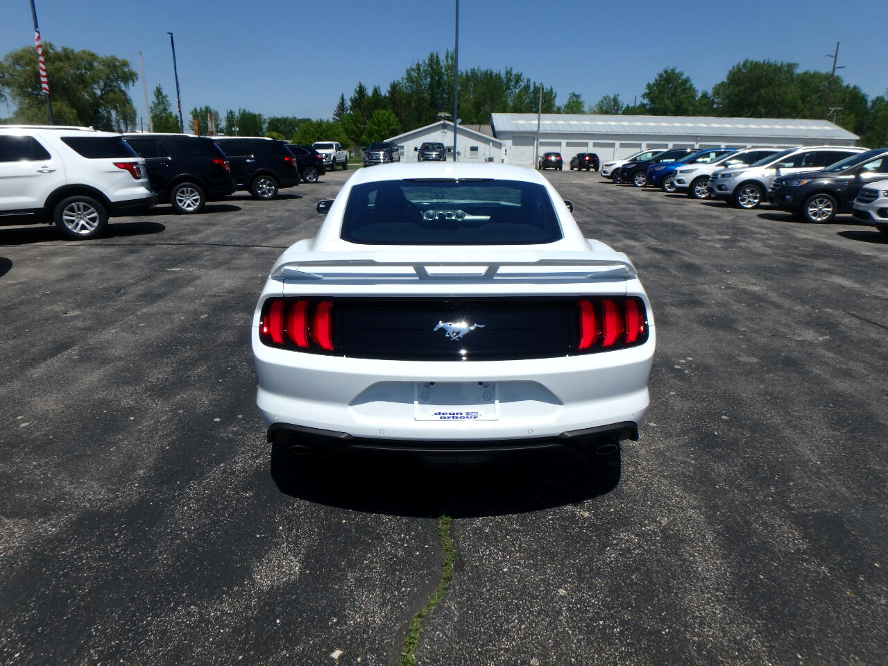 Ford Mustang EcoBoost Fastback 2019