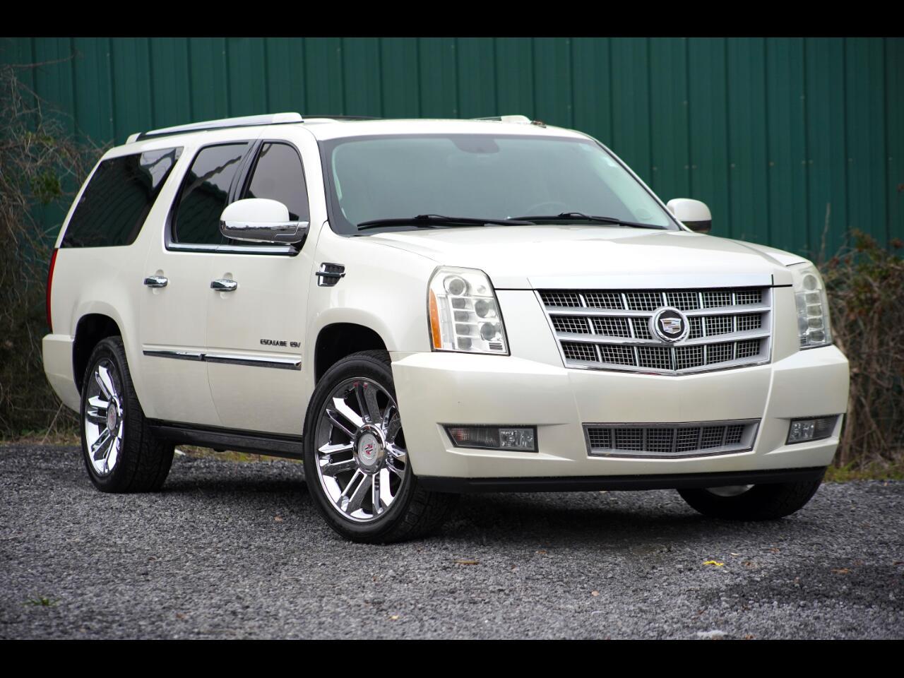 2010 Cadillac Escalade ESV AWD 4dr Platinum Edition