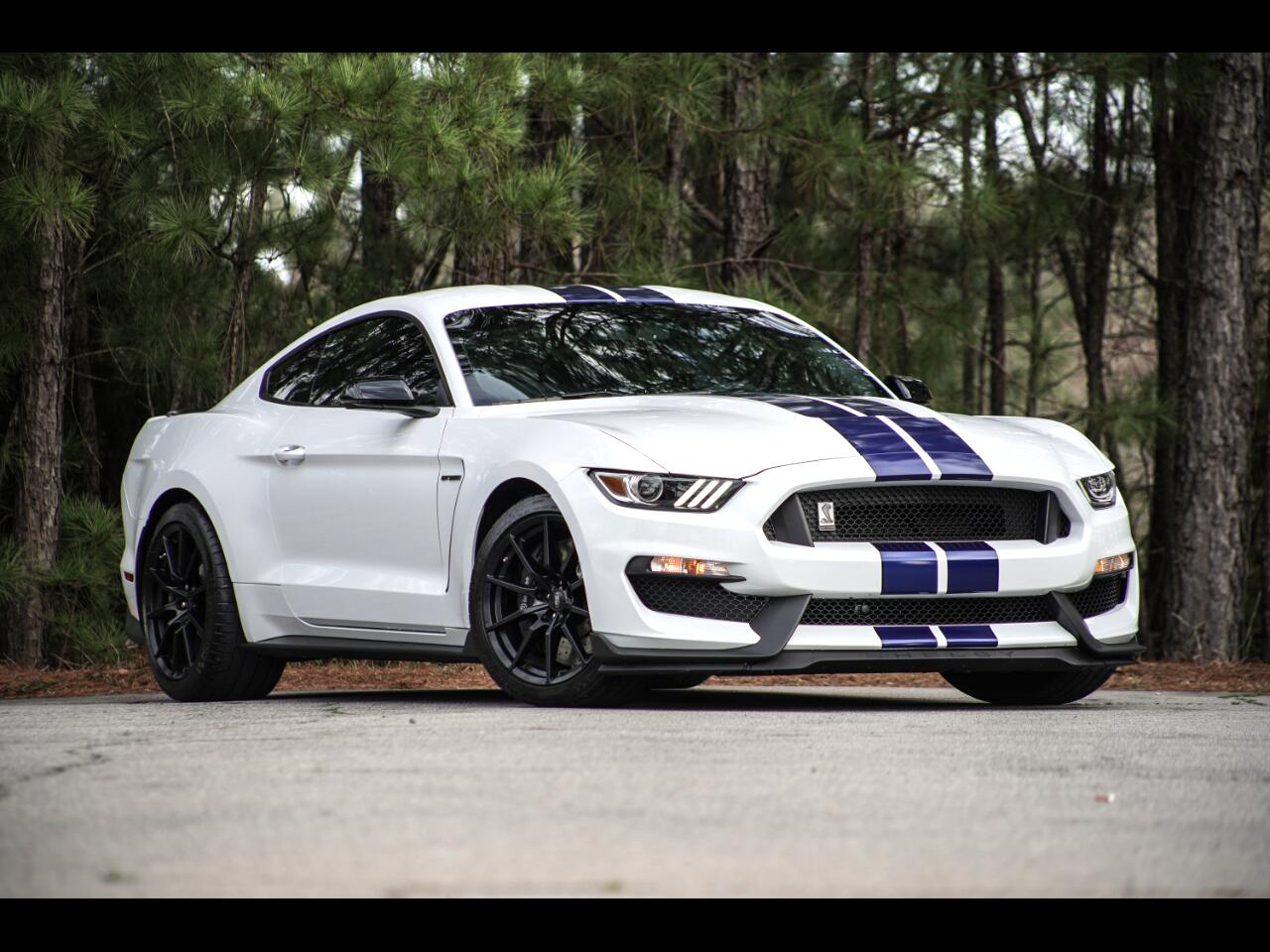 2016 Ford Mustang GT350 Shelby Loaded Up Mustang 5.2L Hurry!