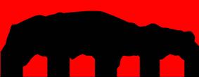 Champion Auto Sales Logo