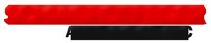 Schwerdtfeger Auto Sales Logo