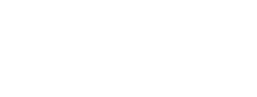 Newberry Ford Pre-Owned Auto Outlet Logo