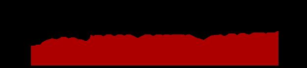 Rayyan Auto Sales Logo