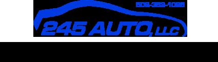 245 Auto  Logo