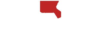 Triangle Imports Logo