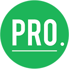 Pro Auto Auction and Sales Alternate Logo