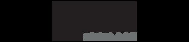 Drive Giant Logo