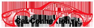 Car ConneXion Inc. Logo