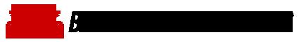 Barksdale Auto Sales Logo