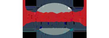 Drive Imports LLc Logo