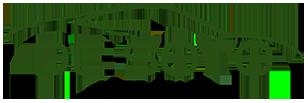 DeSoto Auto Sales Logo