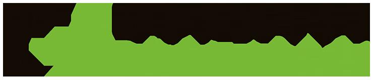Car Wise Logo